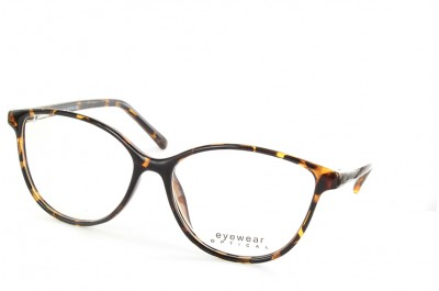 Optical Eyewear MOD104 C01